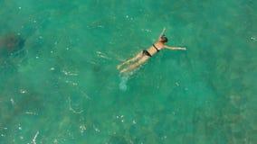 Luftschu? einer jungen Frau, die in aufpassenden Korallen einer hohen See und in den exotischen Fischen schnorchelt stock video