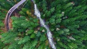 Luftschussgebirgswälder stock footage