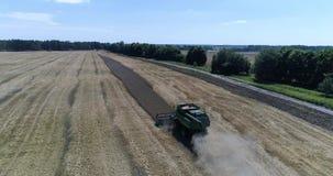 Luftspitzenschuß des Erntens des Weizens durch moderne grüne Erntemaschine stock video