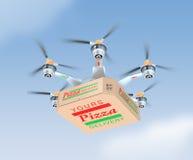 Luftsurr som bär den enkla pizzaasken Royaltyfri Bild
