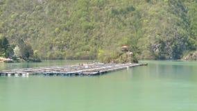 Lufttiefflug nahe bei einem kleinen Dock für Boote stock video