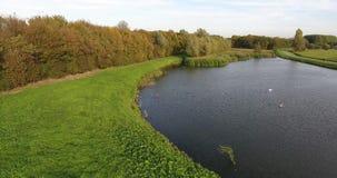 Lufttrieb von See in den Niederlanden stock video