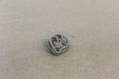 Lug-worm het gieten op het zand royalty-vrije stock afbeeldingen