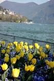 Lugano, bloemen op het meer stock foto
