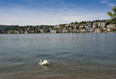 Lugano - lago Lugano, Lugano, Ticino, Suíça, Europa Foto de Stock