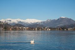 Lugano lake Royalty Free Stock Image