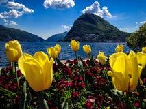 Lugano meer stock afbeelding