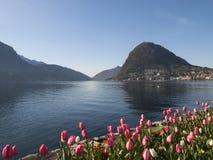 Lugano, Parco Ciani, miasto ogród zdjęcie royalty free