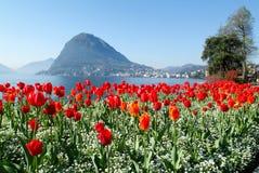 Lugano, Szwajcaria - widok zatoka od ogródu botanicznego obrazy royalty free