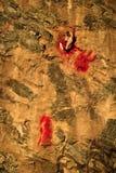 Lugano wall devil Stock Photo
