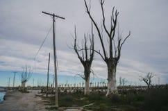 Lugar abandonado em Buenos Aires Foto de Stock