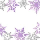 Lugar cinzento roxo pastel colorido dos flocos de neve da bandeira do inverno para t ilustração stock