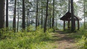Lugar de Bazhovskie do parque natural Imagens de Stock