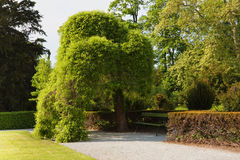 Lugar de descanso en parque Imagenes de archivo