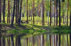 Lugar de la comida campestre cerca del lago en el bosque Imagen de archivo libre de regalías