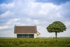 Lugar de la comida campestre con el árbol Imagenes de archivo
