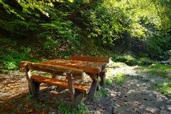 Lugar de la comida campestre en el bosque Imagen de archivo