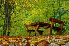 Lugar de la comida campestre en el bosque Foto de archivo