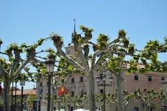 Lugar de nascimento entrelaçado Hall Facade Behind Some Lovely das árvores de Alcala De Henares Cidade de Miguel De Cervantes Cur fotos de stock