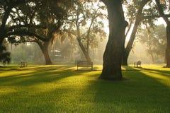 Lugar de reunião da manhã Imagem de Stock Royalty Free