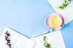 Lugar de trabajo creativo de la primavera Imagen de archivo libre de regalías