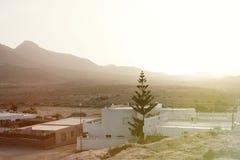 Lugar del desierto con las palmeras situadas en Almería Fotos de archivo
