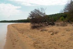 Lugar a descansar na praia selvagem do Oceano Índico Mo?ambique ?frica imagem de stock royalty free