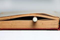 Lugar do lápis no livro de nota velho Fotografia de Stock Royalty Free