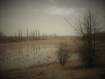 Lugar 1 do lago fotos de stock