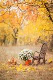 Lugar do outono, decoração do outono, cadeiras fotografia de stock royalty free