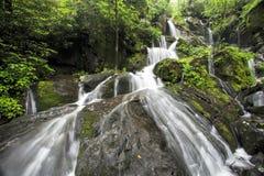 Lugar do parque nacional de Great Smoky Mountains de mil gotejamentos foto de stock