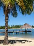 Lugar exótico, Fiji Fotos de Stock
