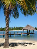 Lugar exótico, Fiji Fotos de archivo