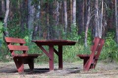 Lugar a ficar na floresta do verão Foto de Stock Royalty Free