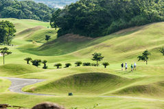 Lugar hermoso con color verde agradable, Taiwán del golf Imagen de archivo libre de regalías