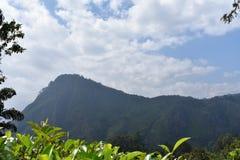 Lugar hermoso de la naturaleza Ella Sri Lanka imagen de archivo libre de regalías