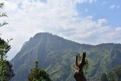 Lugar hermoso de la naturaleza Ella Sri Lanka fotos de archivo
