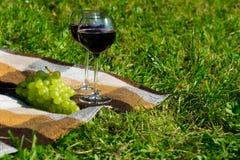 Lugar no parque na grama para o abrandamento, em dois vidros do vinho tinto e em um ramo das uvas Fotos de Stock