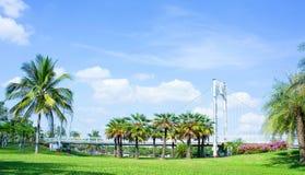 Lugar no parque, na ponte e nas palmas exteriores no parque imagens de stock royalty free