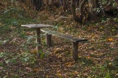 Lugar para la nostalgia del otoño Fotografía de archivo libre de regalías