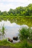 Lugar para pescar Imagenes de archivo