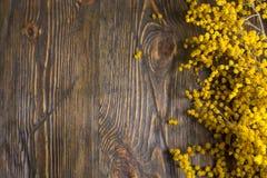 Lugar para seu texto Flores da mimosa em um fundo de madeira Imagens de Stock Royalty Free