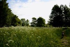 Lugar reservado Imagen de archivo libre de regalías