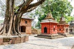 Lugar sagrado del hindus de Pashupatinath Fotos de archivo