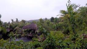 Lugar secreto: charca de la montaña en las zonas tropicales imagenes de archivo