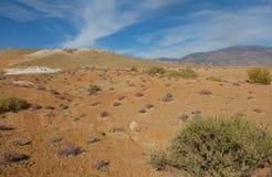 Lugar sin vida del desierto Fotos de archivo