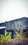 Lugar solo Foto de archivo libre de regalías