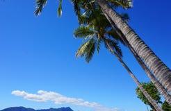 Lugar tropical da praia Fotografia de Stock