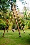 Lugar verde con los oscilaciones de bambú Imagen de archivo libre de regalías