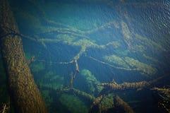 Lugares do paraíso em Nova Zelândia/lago Teanua Imagem de Stock Royalty Free